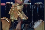 2015-11-13_dudu_tucci__brasil_power_drums_berlin-1479