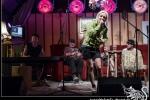 2018-08-16_Walter_Stehlings_Liedermachershow-062